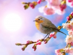 Spring Buds and Bird
