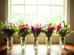 Spring jars in front of the window