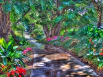 Spring Garden Path