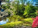 Garden Spring At The River