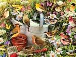 Birds -n- Blooms