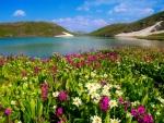 Island lake-Colorado