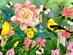 Spring Garden F1