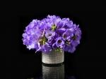 Purple Freesia in a Glittering Vase