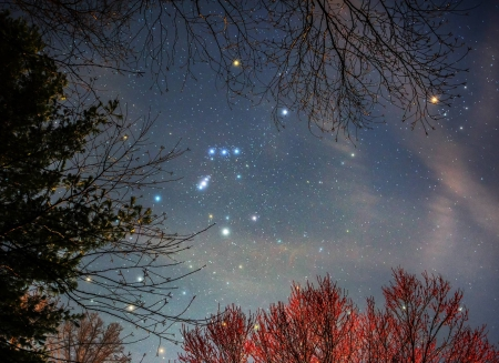 Orion - stars, fun, Orion, cool, space