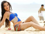 Amy the Bikini Babe