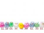 Rainbow Easter Chicks