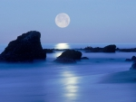 Laguna Beach by Moonlight
