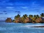 Ocean - tropics