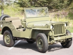 wiley jeep mb stamped grill