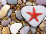 Starfish and stones