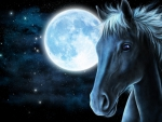 Fantasy with horse and moon