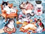 Kitten Collage F2
