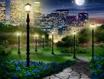 City Park Evening Walk