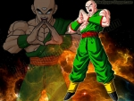 Tien Shinhan Wallpaper