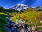 Mount Rainier in Washington