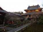 Japanese Villa