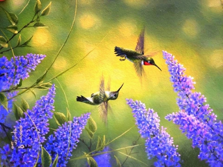 Little Wings of Spring
