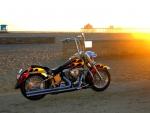 1989 Harley Heritage