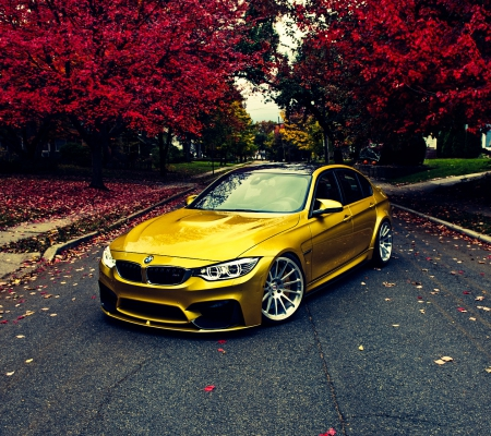 BMW3 - gold, lovely, 3, bmw