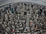 NYC in fisheye