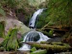 Coal Creek Falls, Cougar Mountains, WA.