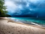Tropical Storm, Kapas Island