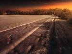 Sunset At Winter