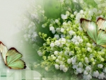 lily of the walley & butterflies