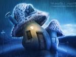 Cottage Mushroom