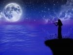 Starlight Sonata