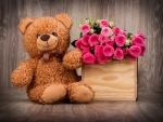 teddy bear and pink roses