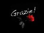 grazie . gracias . thank you  . ačiū . .