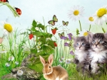 Kittens and Bunny