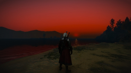 Witcher staring off into the sunset