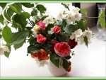 lovely roses and jasmine flowers