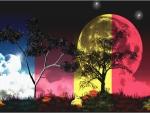 Noche cromatica