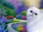 Paradise Kitty