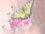 Watercolor Butterfly Sakura