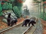Bear Tracks F