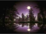 Placido nocturno