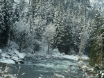 Wenatchee River in Winter