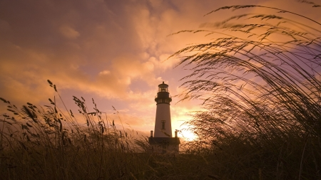 Lonely Lighthouse - Lighthouse, Isolated, Clouds, Grass