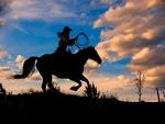 Runaway Ride
