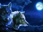 Moonlights Night