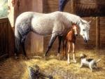 Unexpected Company - Horses F