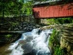 Pack Saddle Bridge and Waterfall, Pennsylvania