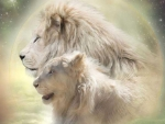 Couple_of_lions