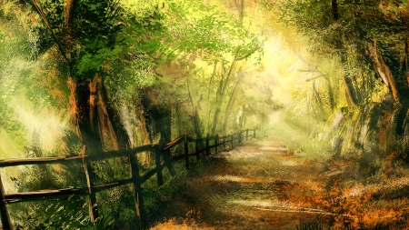 Forest Pathway Forests Amp Nature Background Wallpapers On