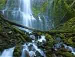 Proxy Falls, Three Sisters Wilderness, Oregon